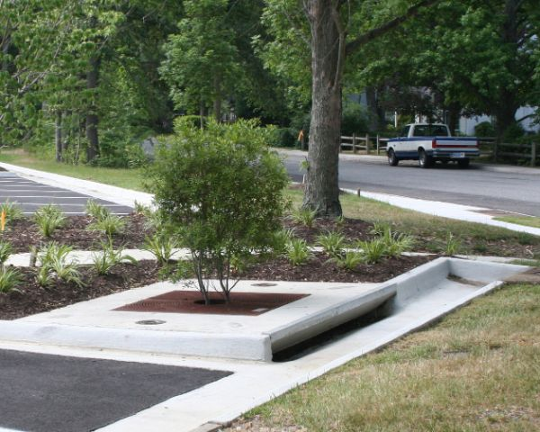Filterra® Bioretention