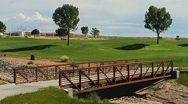 <p>Truss Options</p>